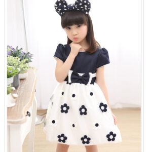Princess Cotton Chiffon Frock (1)